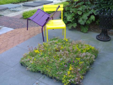 Speels kleurige stoelen met groendakcassette