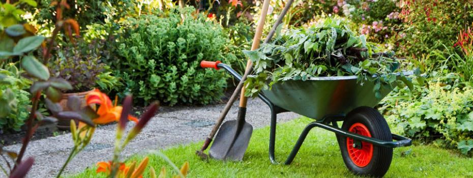 Een degelijk tuinonderhoud maakt een tuin mooi voor elk seizoen