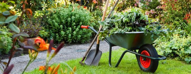 Een goed tuinonderhoud zorgt voor een mooie tuin